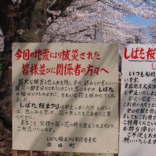 0421a船岡公園524.jpg