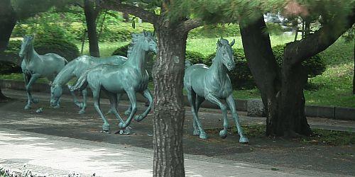 0905a駒・十和田市194.jpg